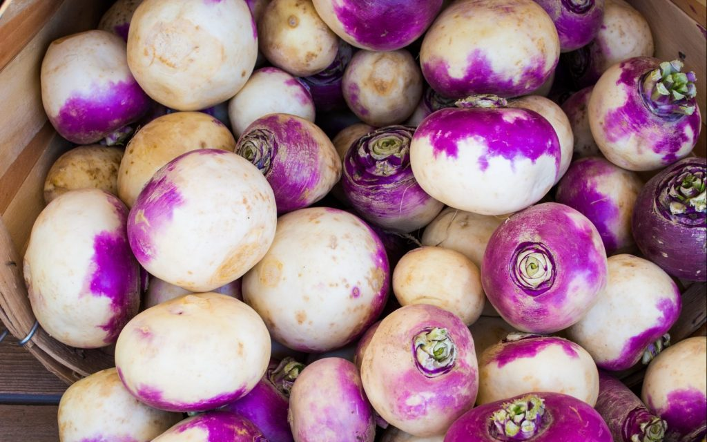 northern_rivers_seasonal_vegetables_turnip